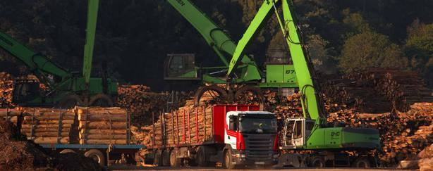 Venta de madera en Gijón