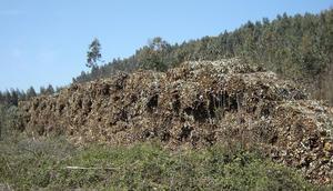 Pacas de Biomasa