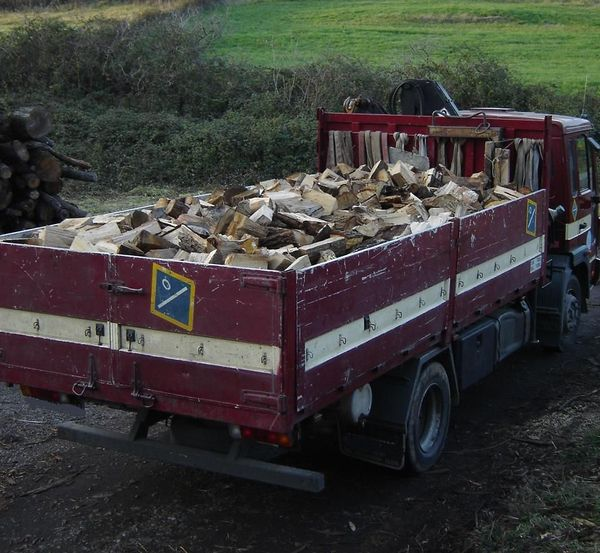 Camion con Leña